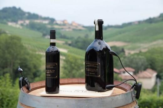 Visita guidata della tenuta + degustazione di 4 vini ...